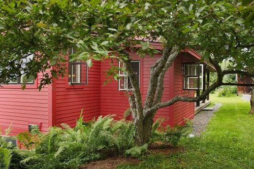 The side of a fulled remodeled red house, seen behind a tree and small fern garden in central vermont by allied building contractors
