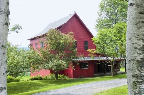 A view of a fully remodeled red farmhouse between two birch trees in central vermont by allied building contractors