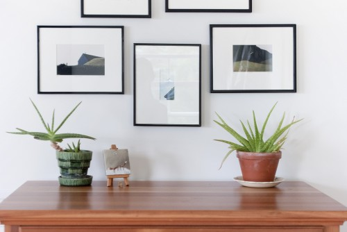 A wood chest of drawers with a few plants on top in front of a wall with hanging framed photos in a fully remodeled bedroom