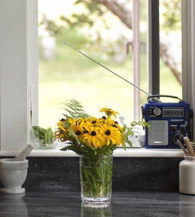 A vase with yellow flowers on a kitchen counter in front of a window