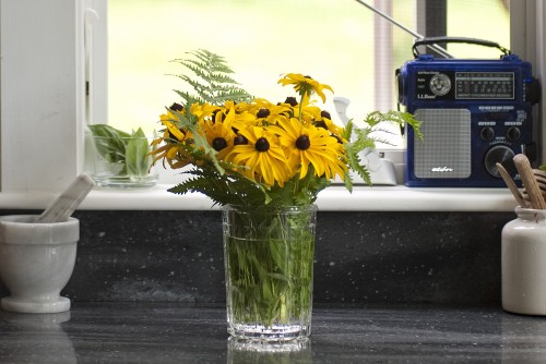 A vase with yellow black eyed susans in front of an open window in a kitchen counter looking out to a green central vermont field